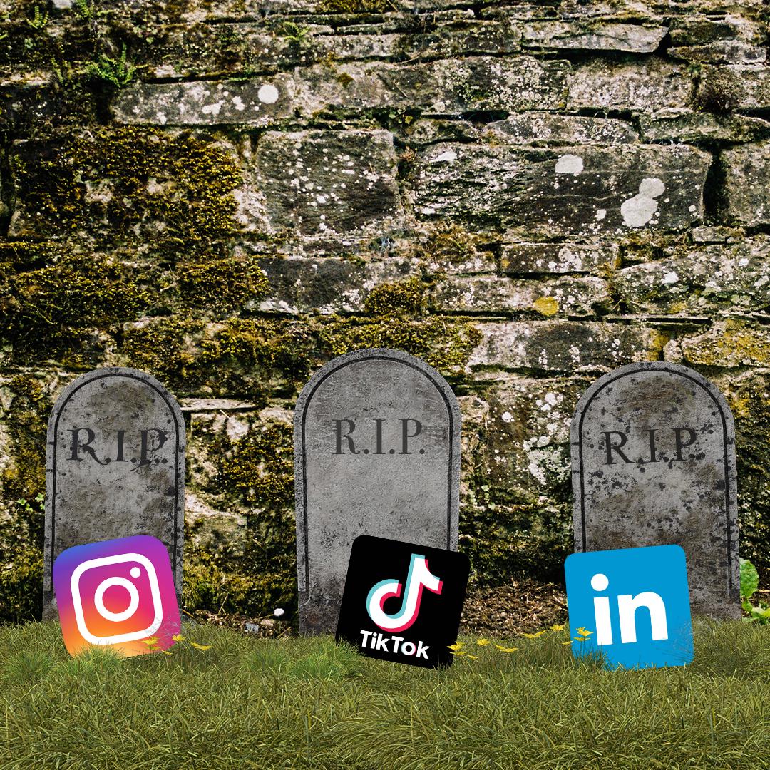 Welche Social Media Plattformen sind aktuell relevant?